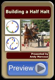 Building a Half Halt