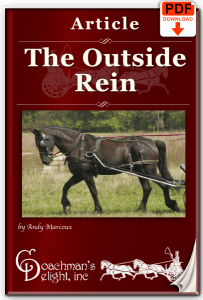 Outside Rein 3
