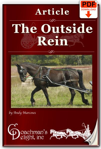 The Outside Rein Article 1
