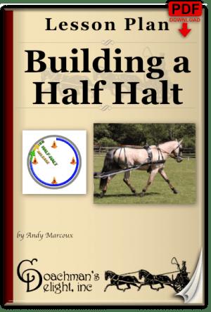 Half Halt 2