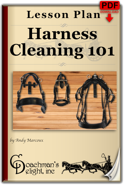 Harness Cleaning 101 1