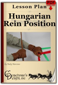 Hungarian Position Lesson Plan