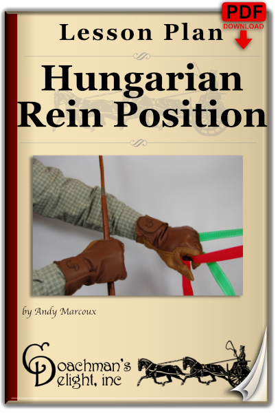 Hungarian Rein Position 1