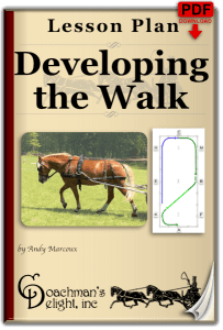 Walk Lesson Plan