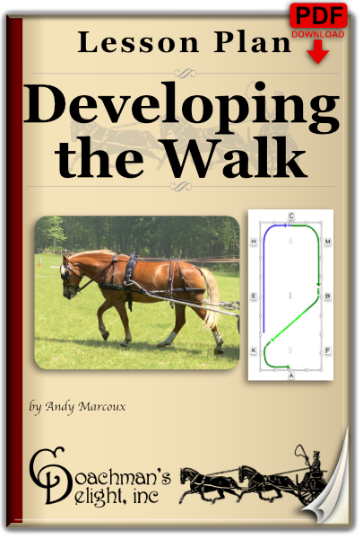 Developing the Walk 1