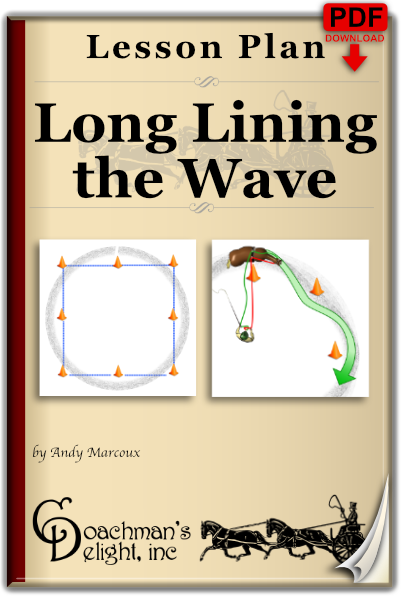 Long Lining the Wave 1