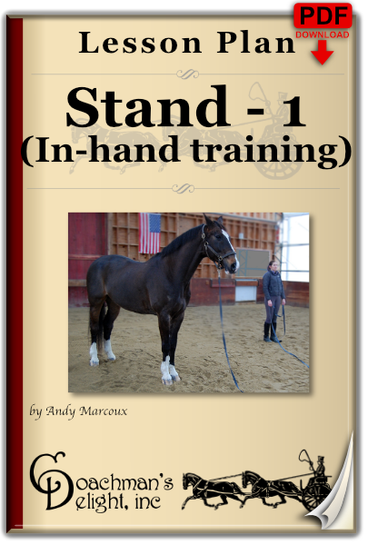 Fundamentals of Teach Your Horse to Stand