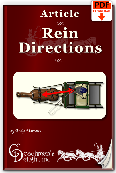 Rein Directions 1