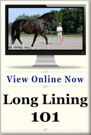 Long Lining 3