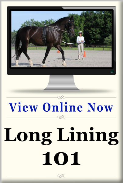 Long Lining 101