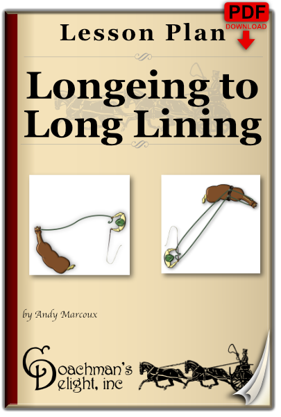 Longeing to Long Lining 1