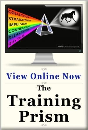 Online Classes 5