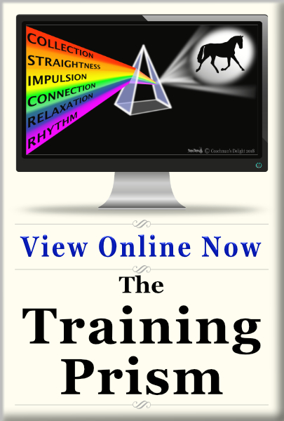 The Training Scale 1