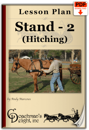 Teach your horse to stand while being hitched to a carriage.