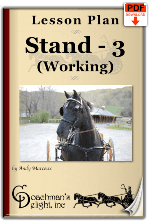 Teach your horse to stand as part of his work.
