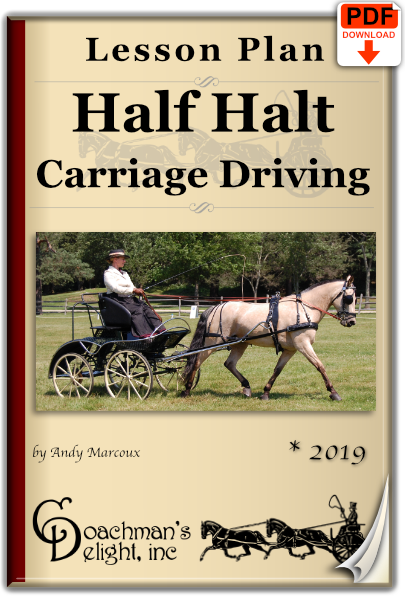 Half halt lesson plan for carriage driving