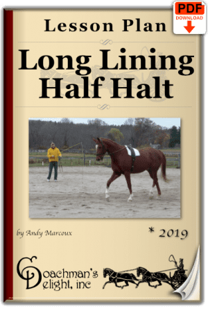Long lining half halt lesson plan