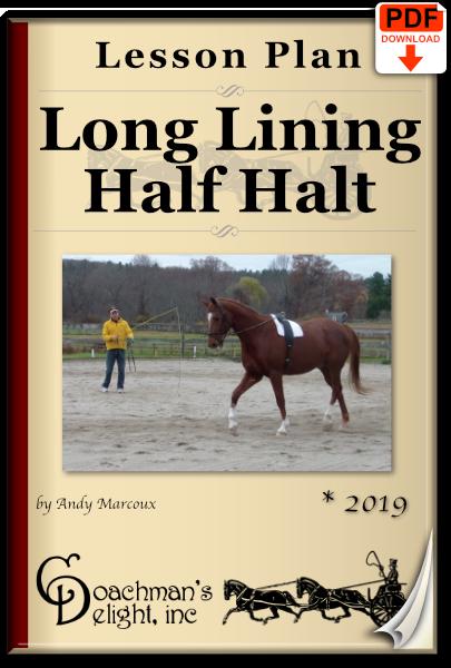 Long lining half halt lesson plan
