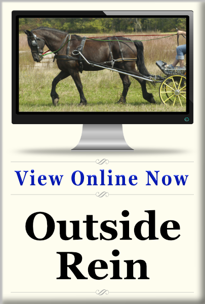 An online class all about getting your horse on the outside rein.