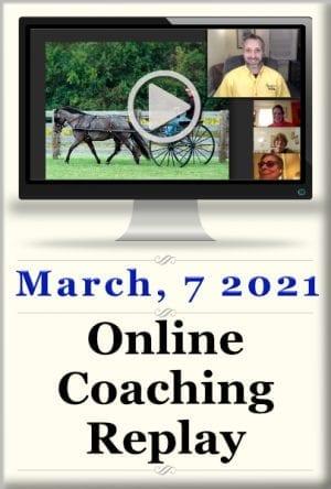 Online Classes 9