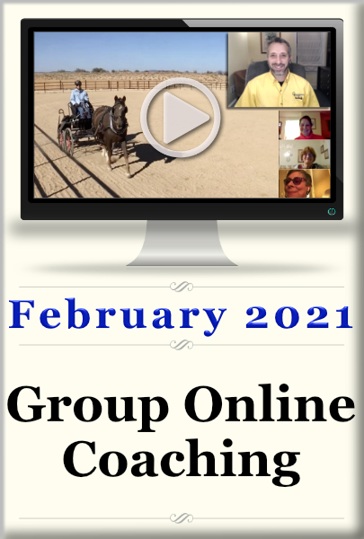 Group Online Coaching ~ February, 2021